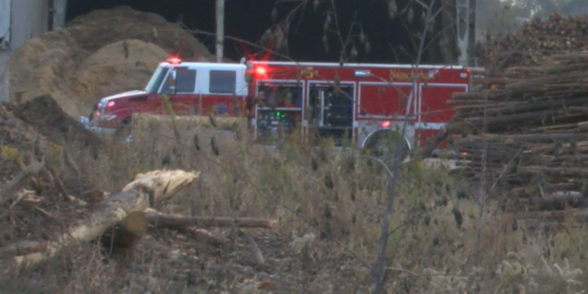 Fire trucks from three cities called to Norbord fire in Nacogdoches