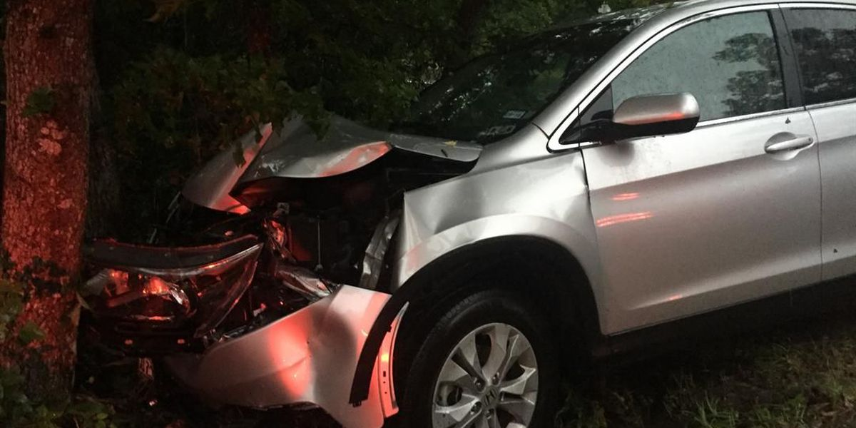 1 injured after vehicle hydroplanes and hits tree in Trinity Co.