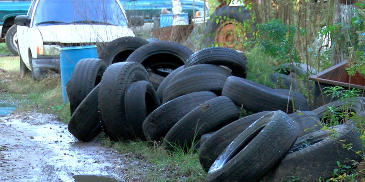 Grant allows Lufkin woman to clean up 1,900 illegally dumped tires