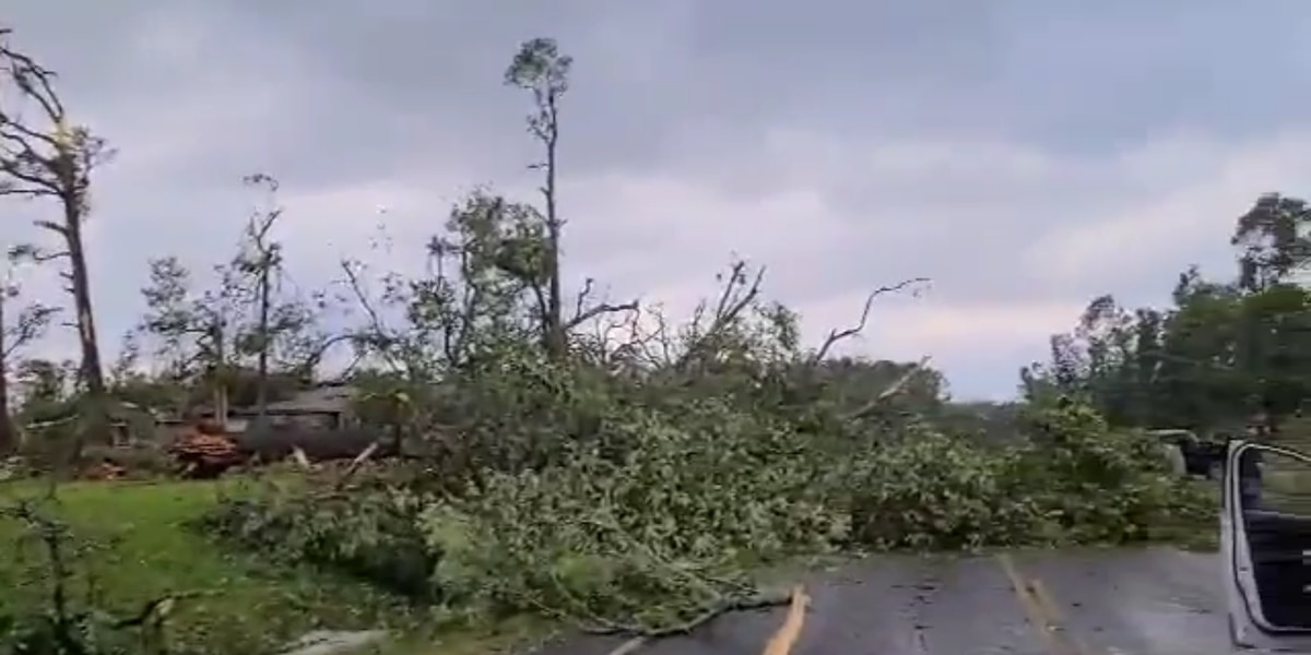 At Least 7 Dead as Severe Storms Continue to Ravage the South