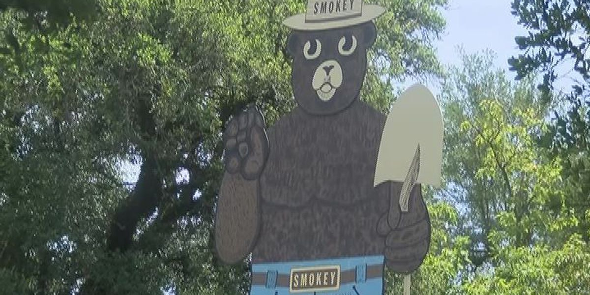 Forest Service urge East Texans to be cautious with fireworks
