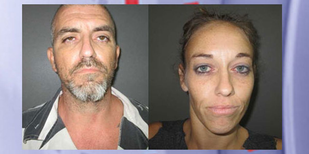 Houston County traffic stop results in 2 felony arrests, seizure of meth, Xanax