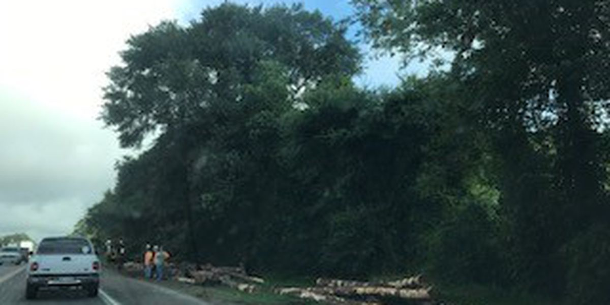 Delays possible following log truck wreck on U.S. 69 N in Angelina County