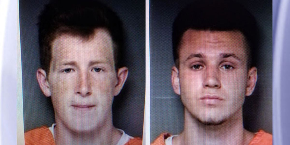 Newton County Sheriff's Office: Theft suspects allegedly stole golf carts, gun, fishing equipment