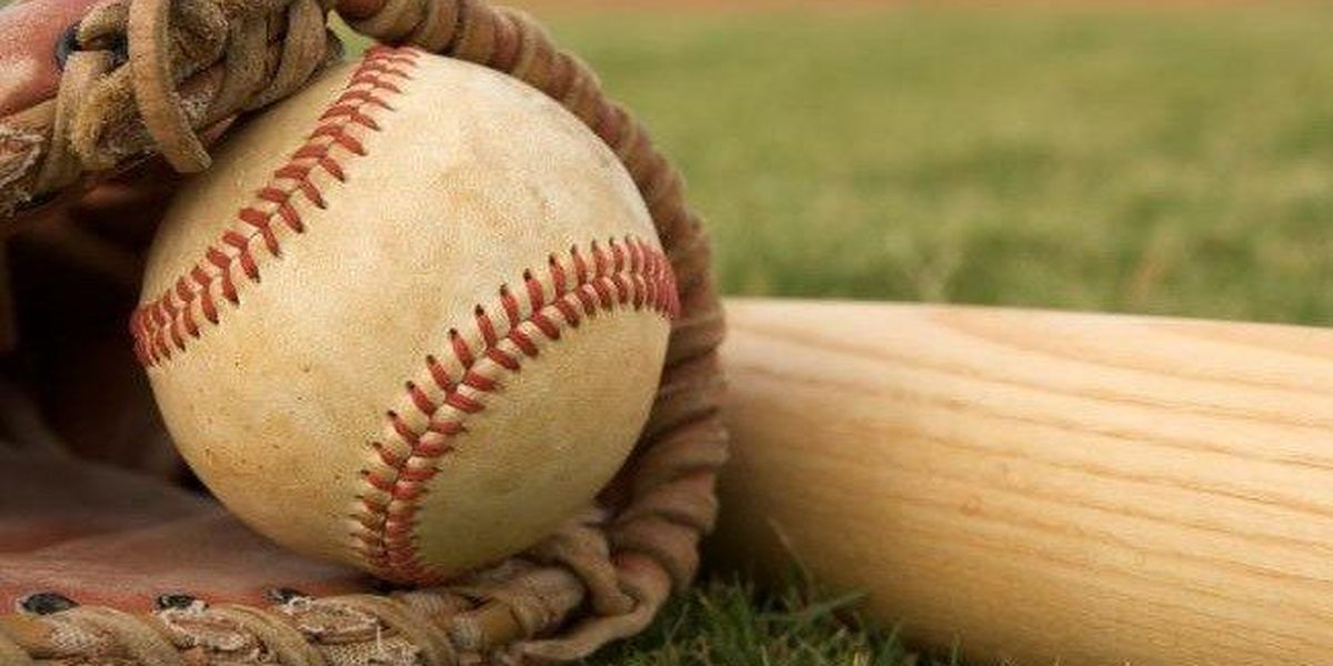 Friday night high school baseball bi-district scores