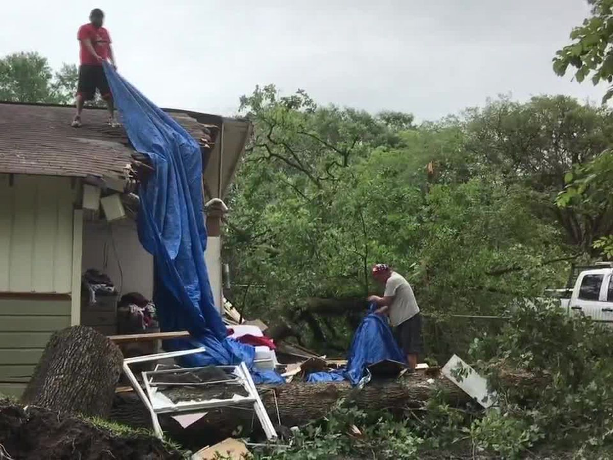 WebXtra: Tree falls on house, kills woman sleeping