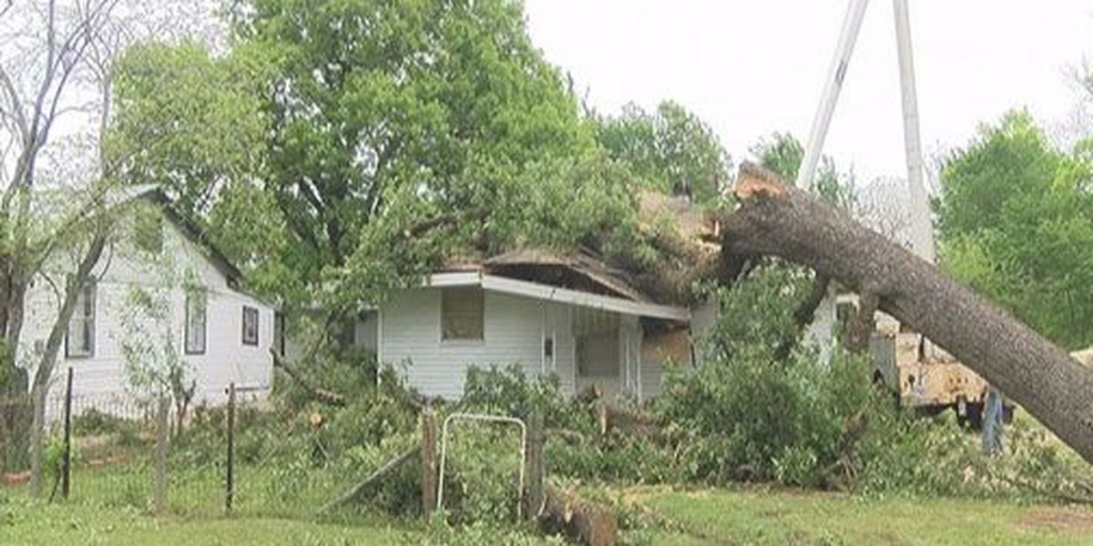 Tree falls into Lufkin woman's living room