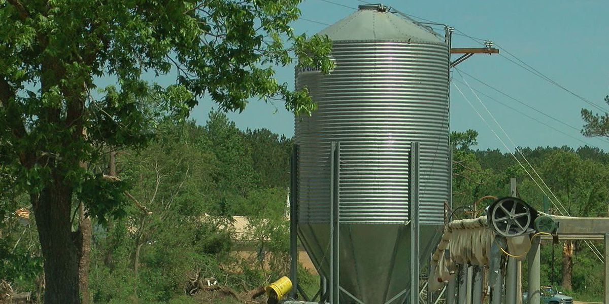 Future of dairy farm business uncertain in Alto