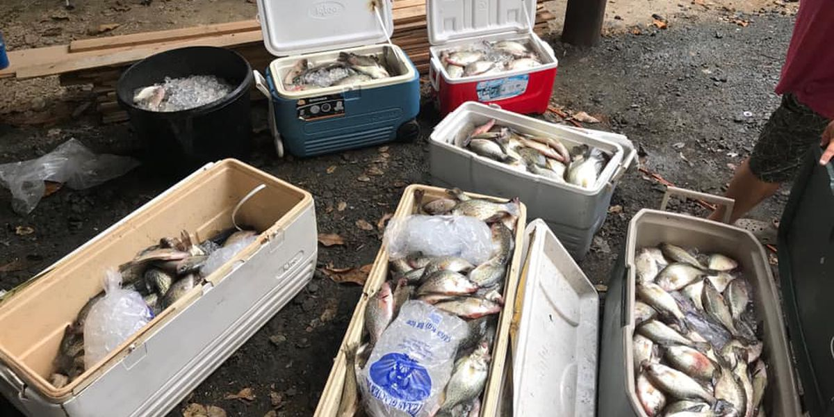 Guides, anglers charged after being found with over-limit amount of fish on Lake Sam Rayburn