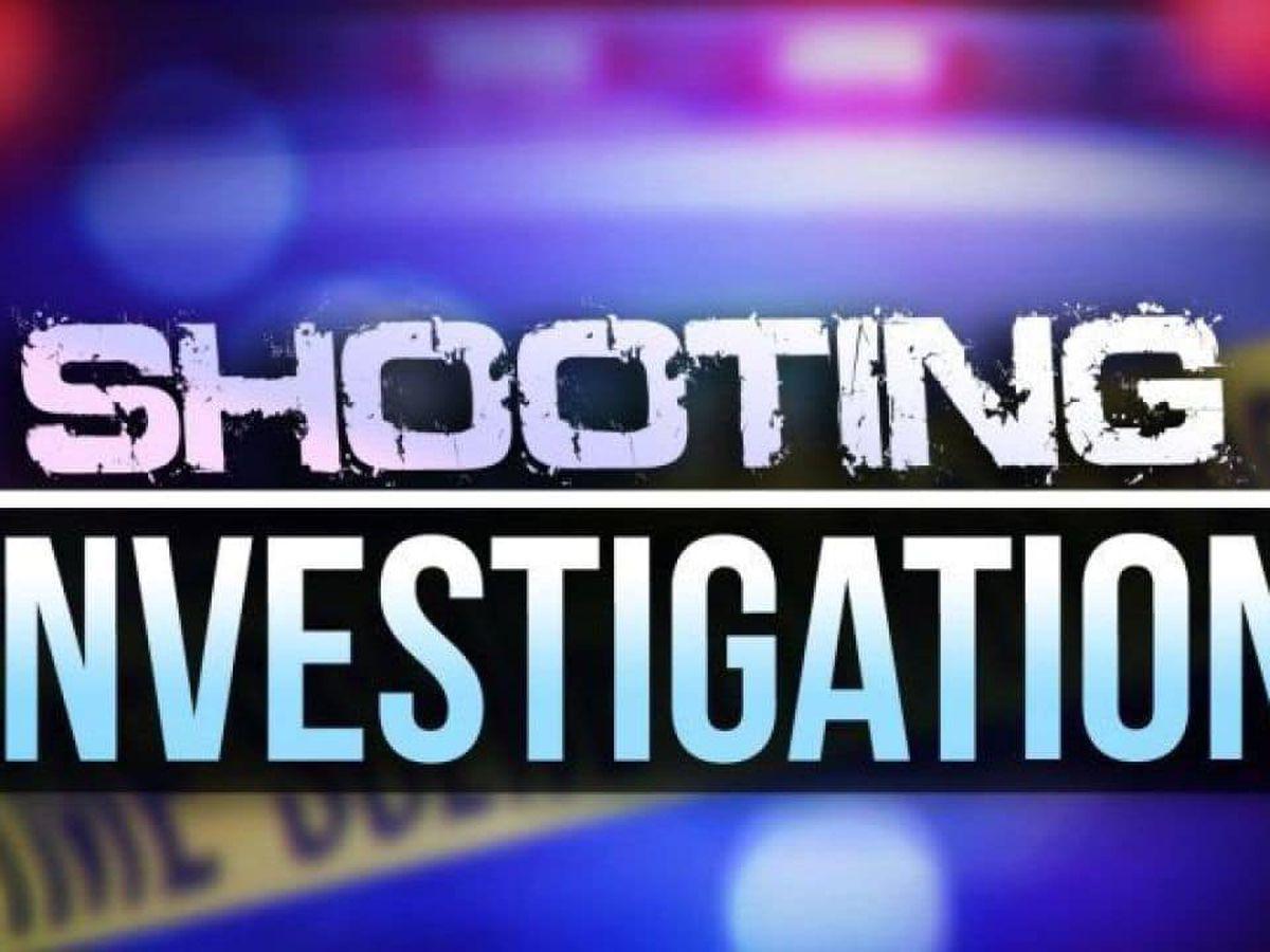 6-year-old girl fatally shot at San Antonio car club meetup