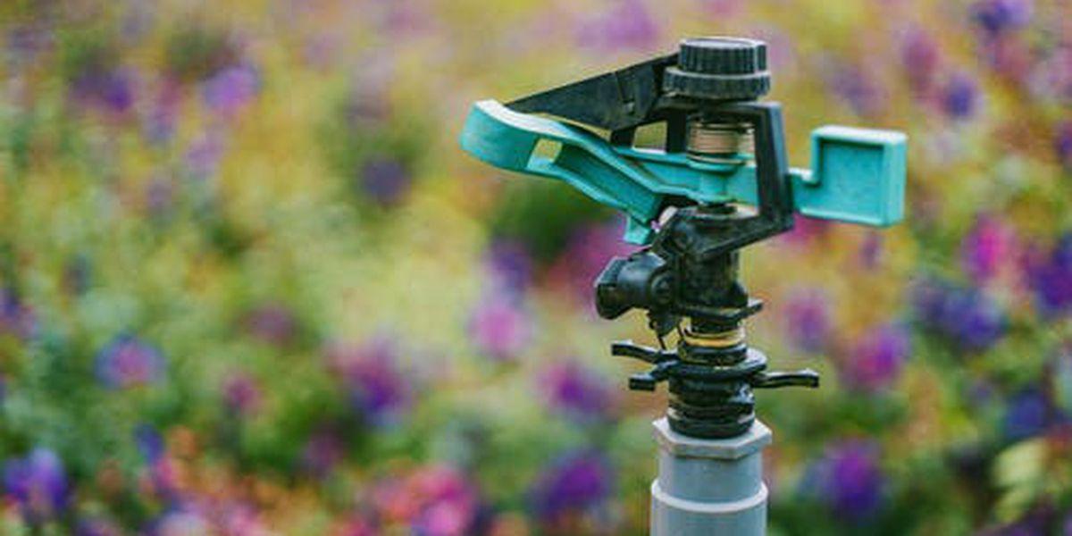 Irrigating your landscape