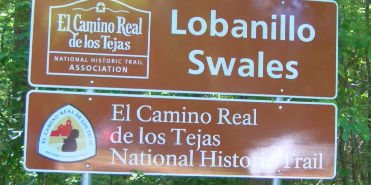 Lobanillo Swales in Sabine County expected to be a stop for El Camino Real travelers
