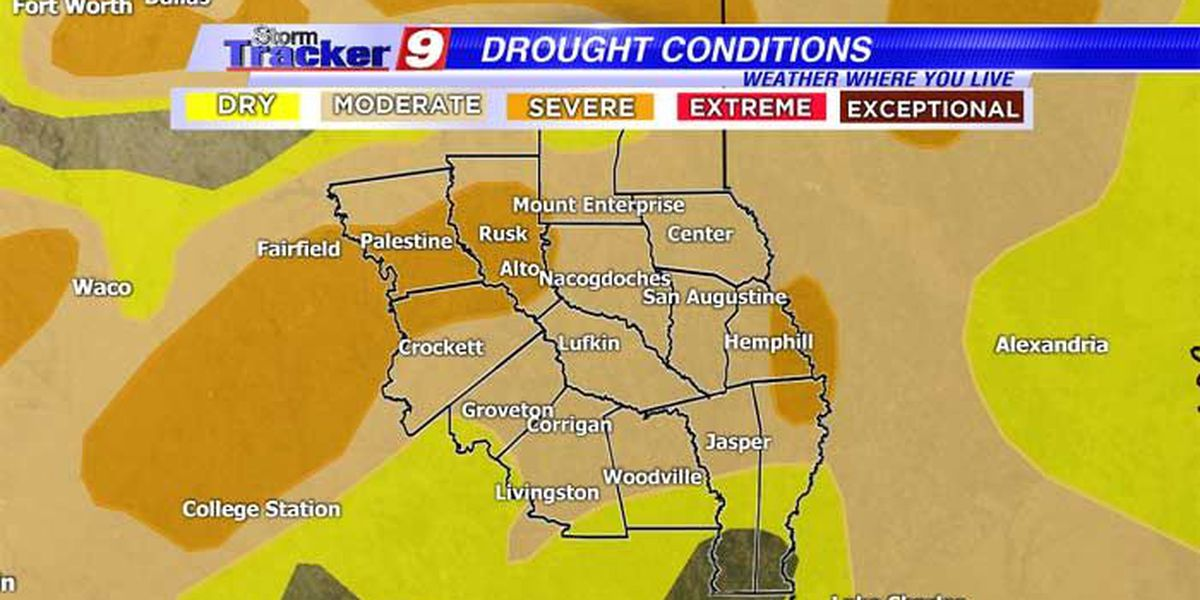 Despite recent rains, drought conditions still persist in the Piney Woods
