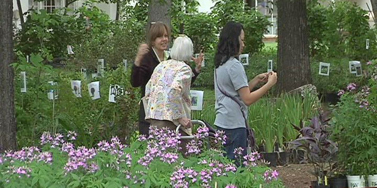 SFA's Garden Gala Day Spring Plant Sale set for Saturday