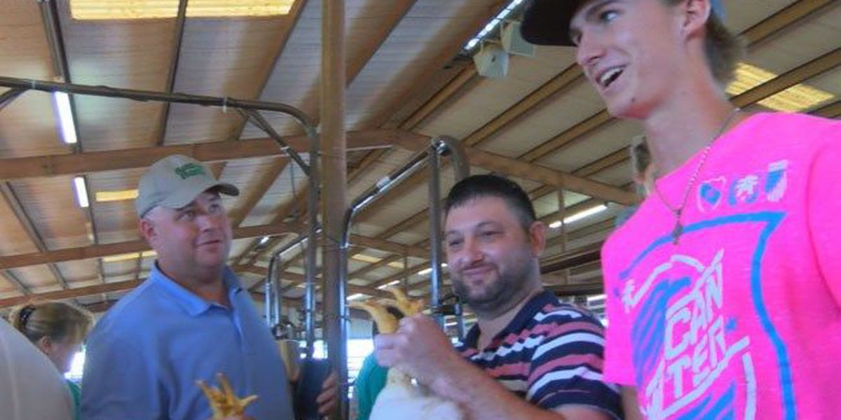 Poultry judging takes center stage at Piney Woods Fair