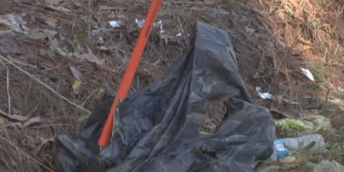 Study: Lufkin community spends thousands to fight litter problem