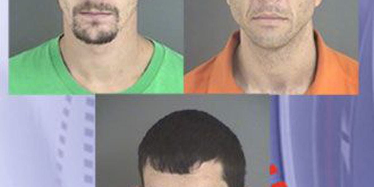 Crime Stoppers Crime of the Week: Probation absconders