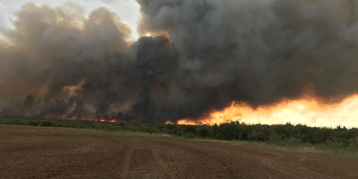Firefighters say despite no burn ban, fire danger still high in Angelina County