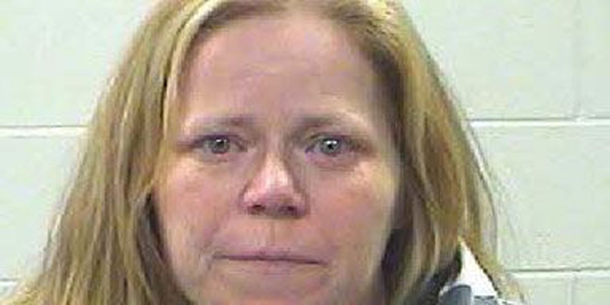 Affidavit: Livingston woman left young girl at home for 1 1/2 hours with no phone