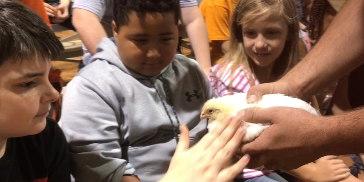 Nacogdoches students learn importance of agriculture industry during Ag Day