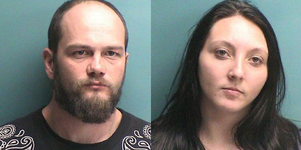 Two arrested in Cushing after dead and dying puppies found