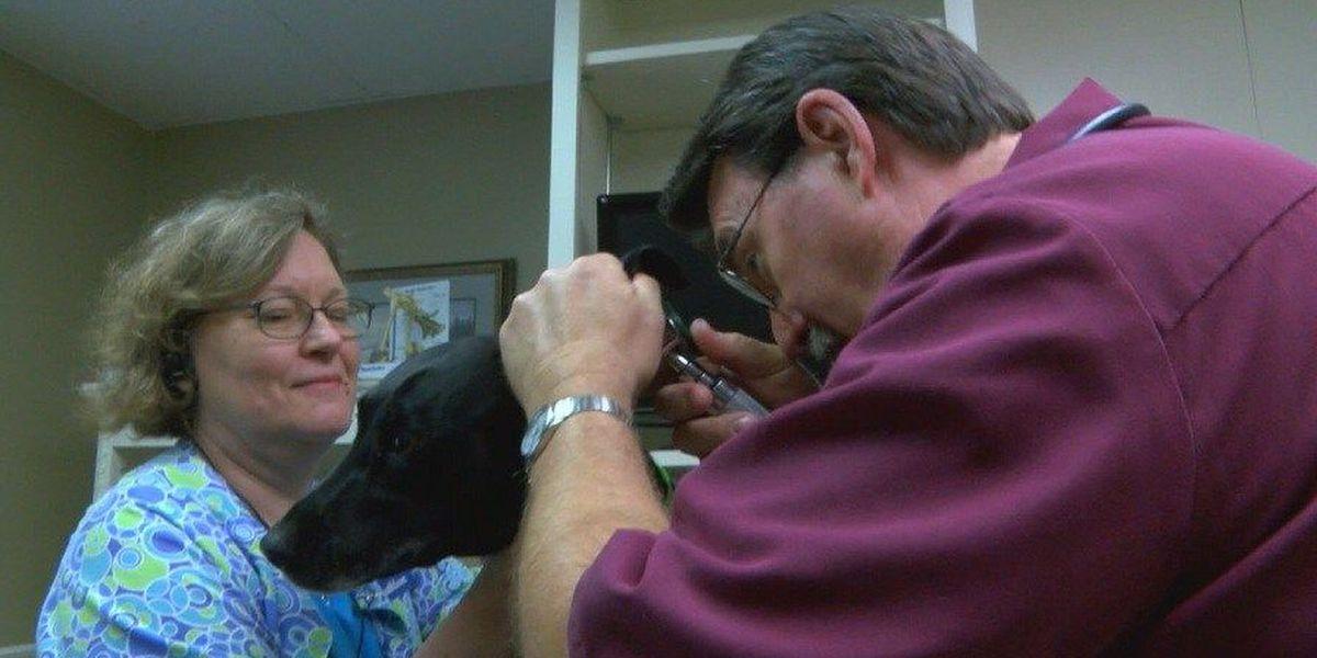 Lufkin veterinarian retires from homegrown practice