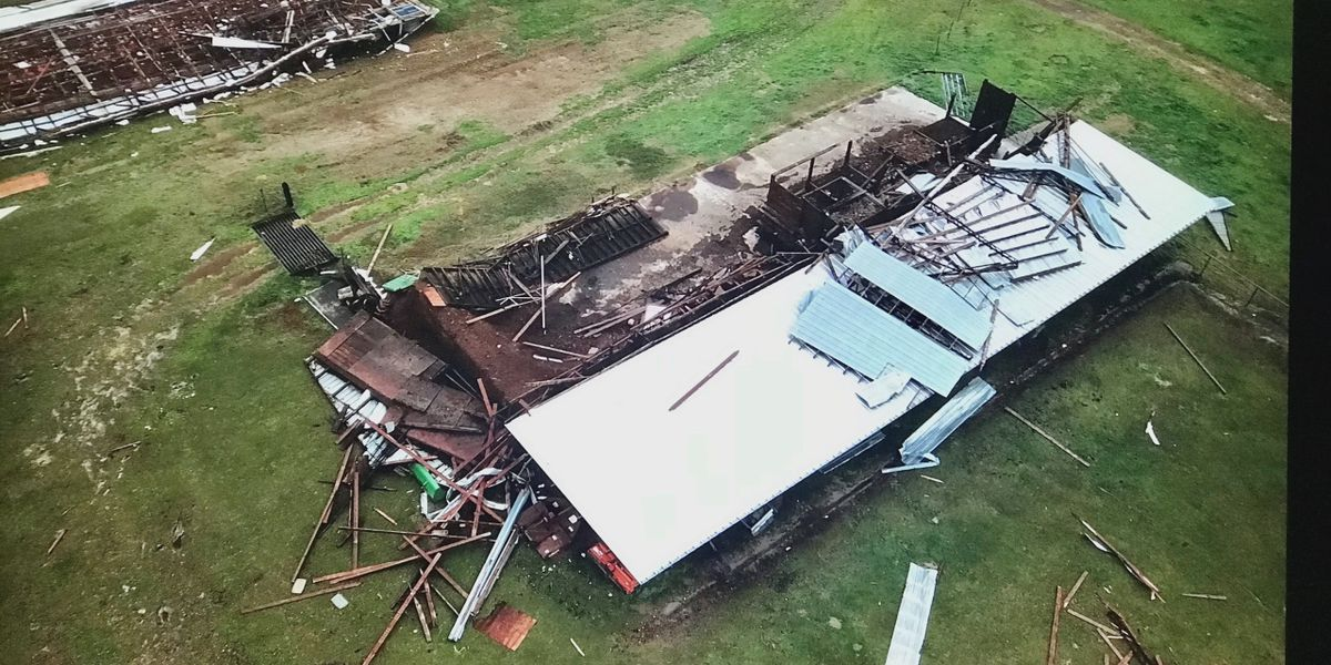 Nacogdoches County poultry grower has tough decision after tornado damages farm investments
