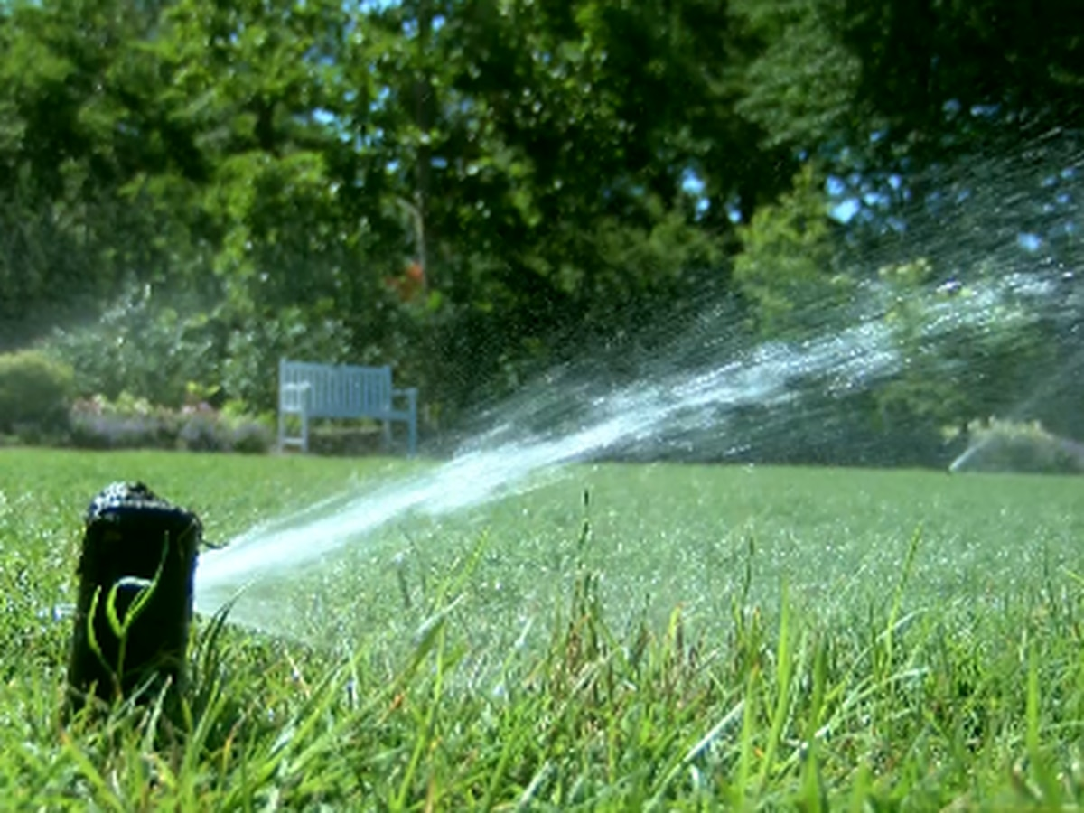 East Texas Ag News: Water absorbs in lawns with soak and cycle method