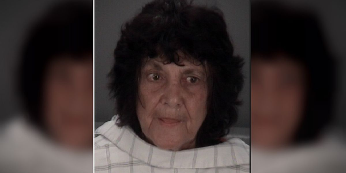 Elderly Florida woman accused of hitting boyfriend with metal detector for watching porn