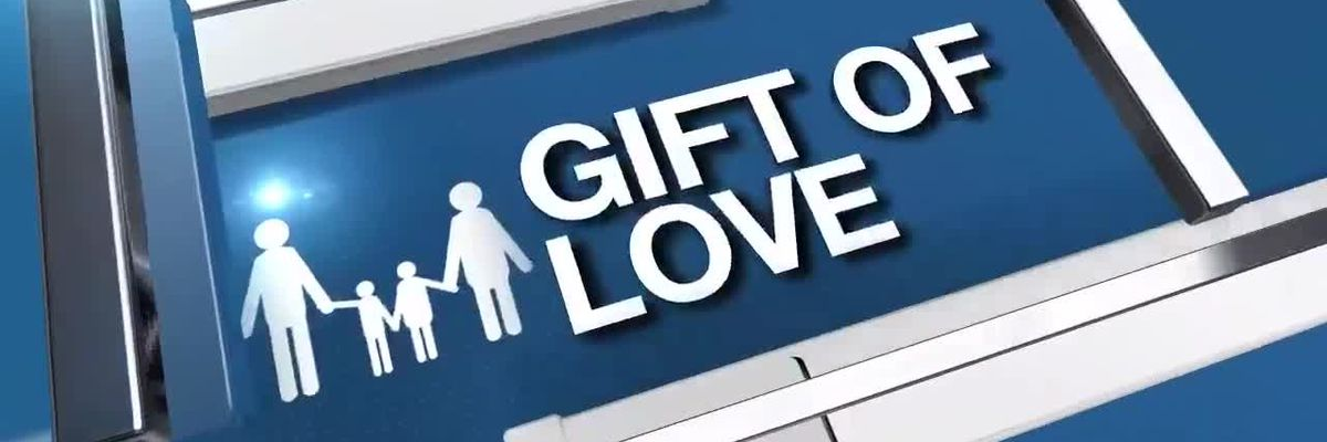 Gift of Love Bed Building