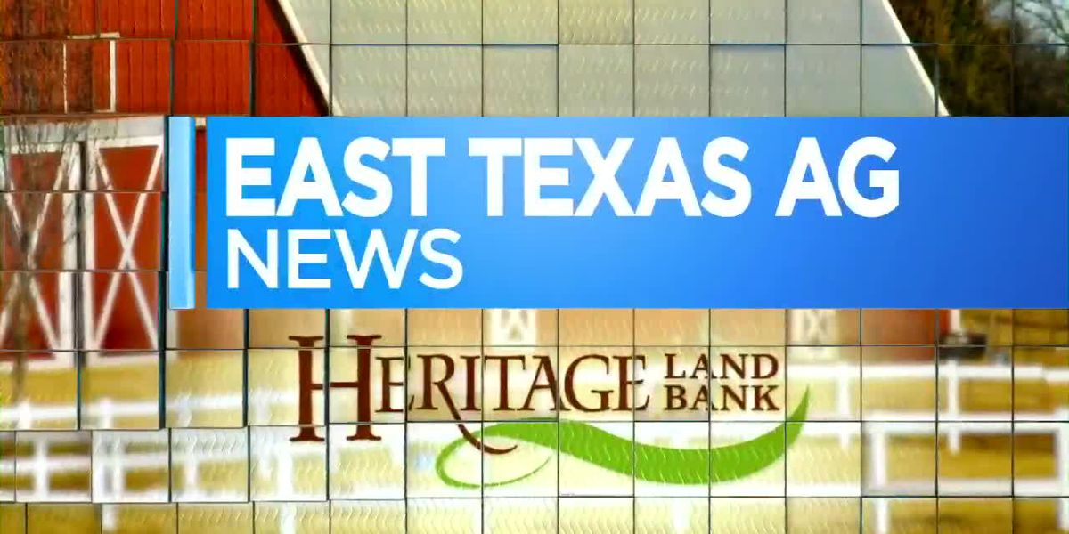 East Texas Ag News: More Tips on Storing Hay