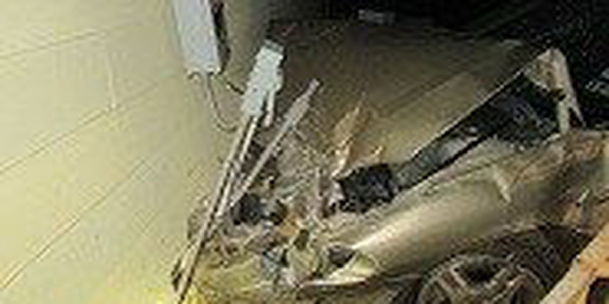 Trinity man crashes into house, leaves car