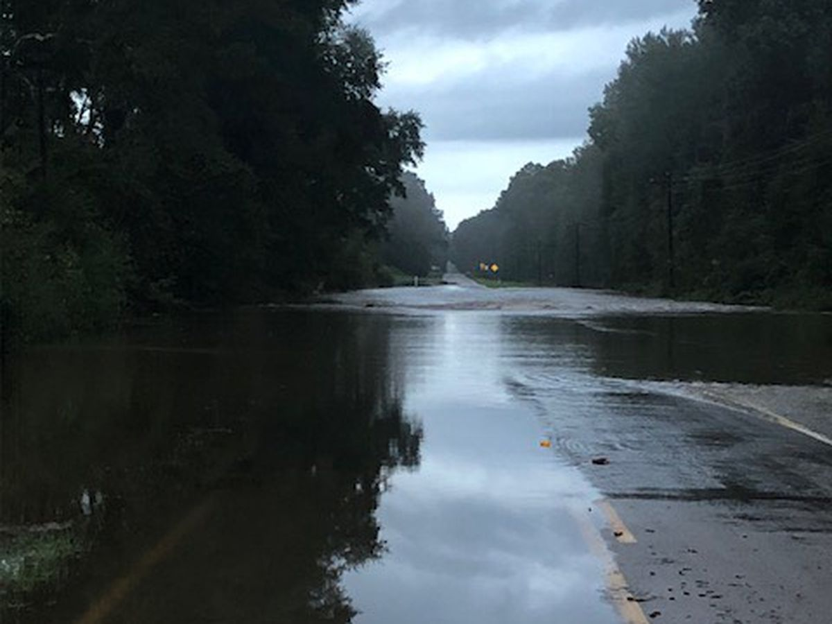 TxDOT: Several Trinity County roads impassible due to high water