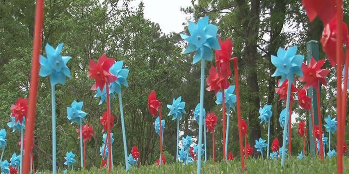 Harold's House raises awareness on child abuse with pinwheel display