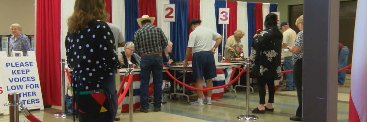 Voters will decide amendments to state Constitution