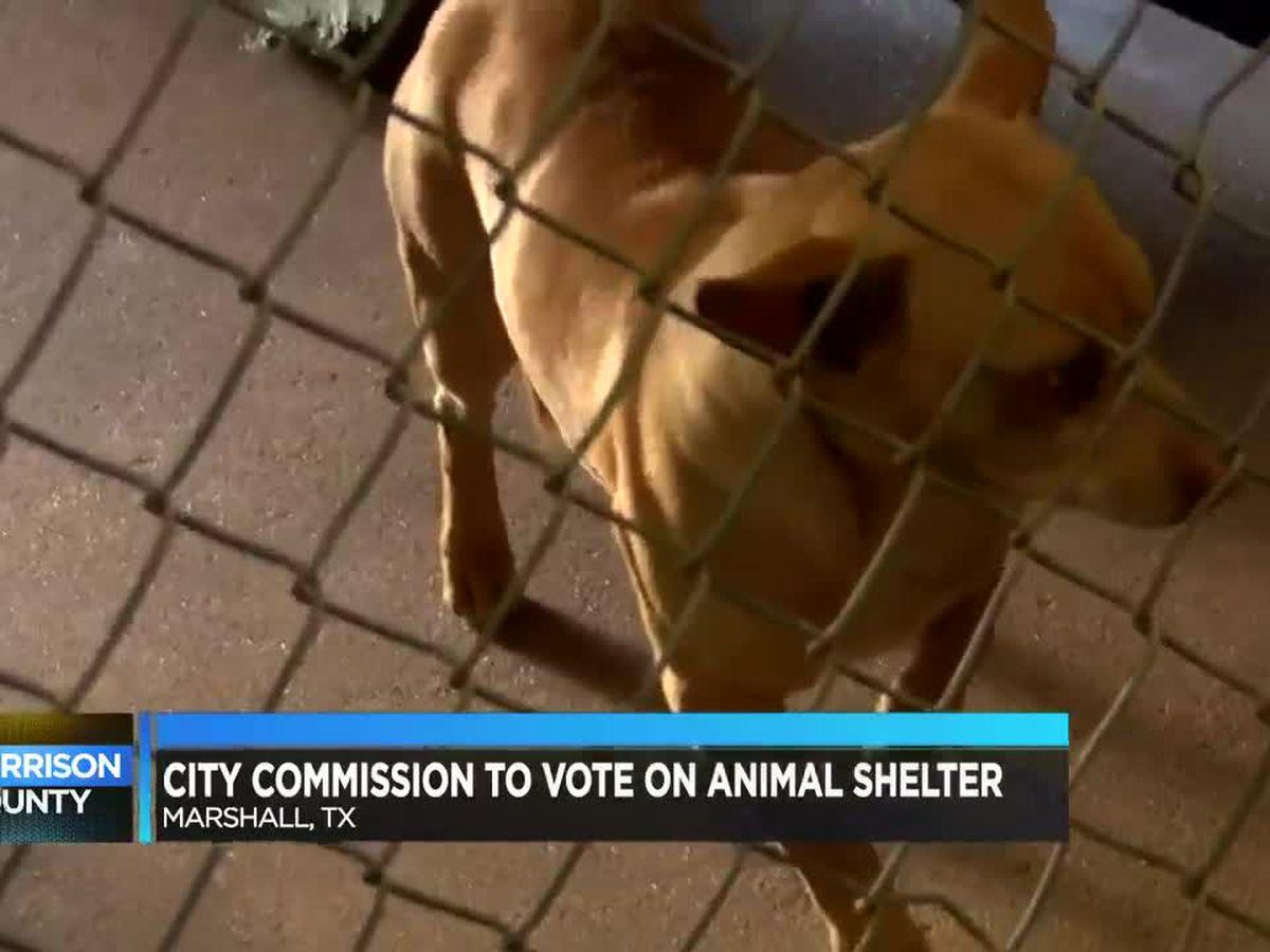 New animal adoption center coming to Marshall