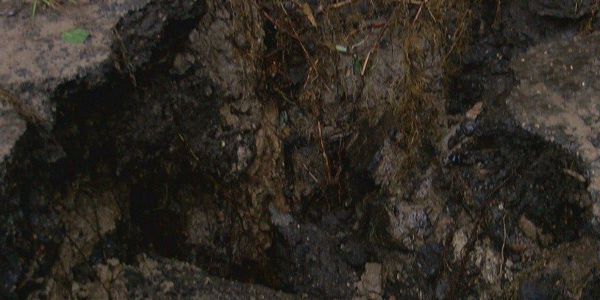 Zavalla residents trapped after culverts washed out