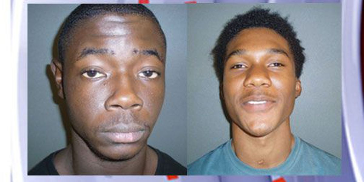 Houston County affidavits: 2 arrested after gun sale turns into armed robbery