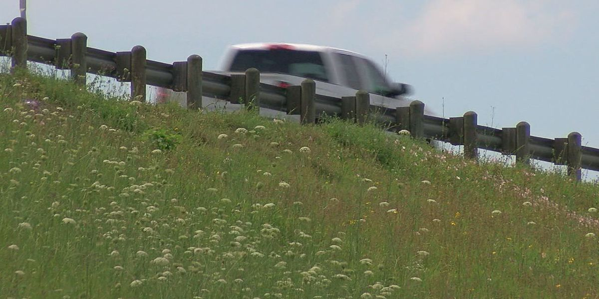 Multiple road projects on tap for Deep East Texas
