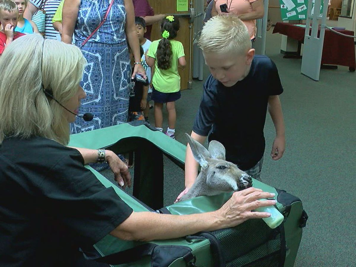 Kurth Memorial Library welcomes creatures