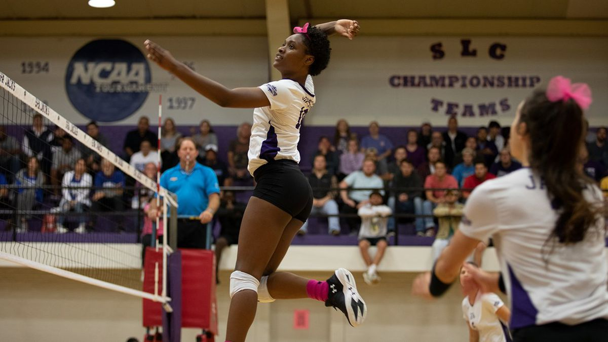 SFA Volleyball looking to make it 20 straight wins