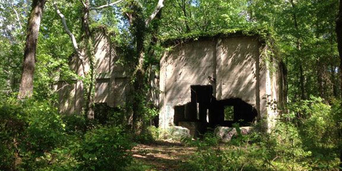 East Texas Throwback: Ruins of Aldridge sawmill town hidden away in Angelina National Forest