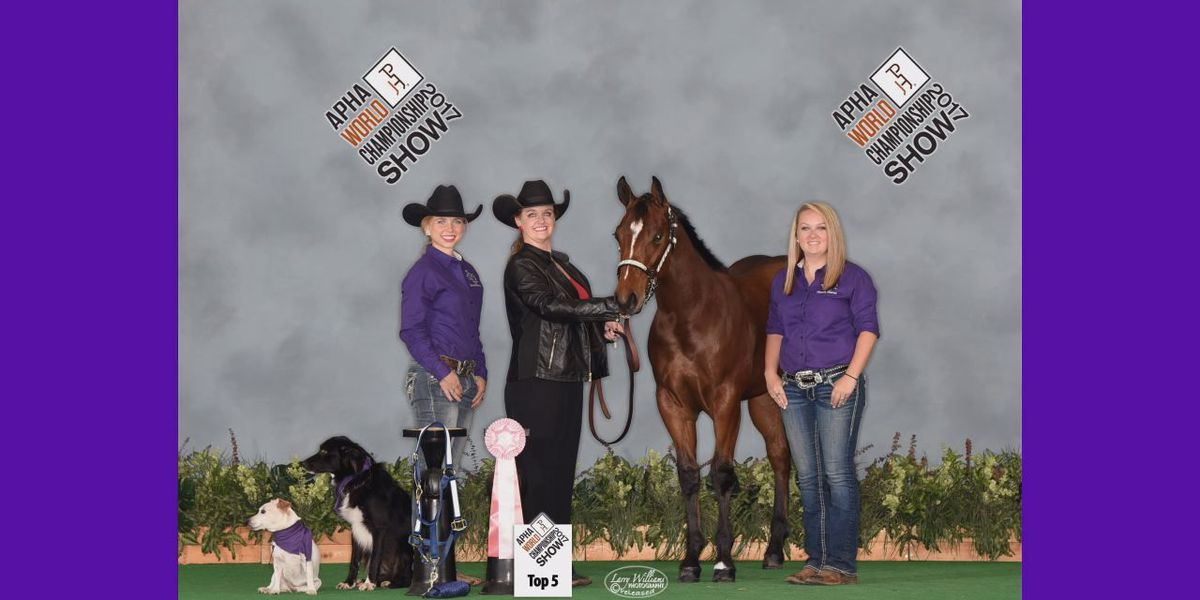 SFA colt named Breeder's trust Futurity Champion at Fort Worth horse show