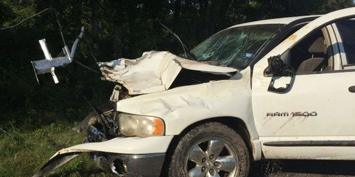 Pickup hits 2 cows, winds up submerged in creek near Lufkin zoo