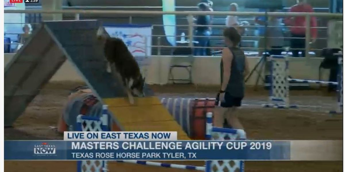 WATCH: Hundreds of dogs to compete in agility contest held in Tyler