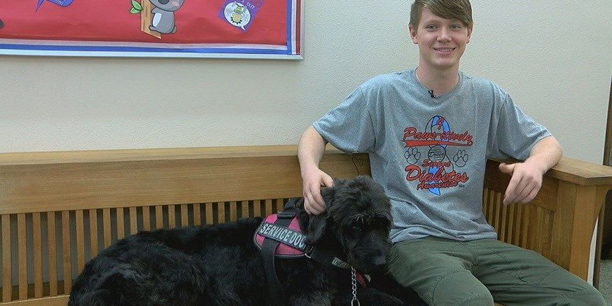 Lufkin family seeking service dog for son with diabetes