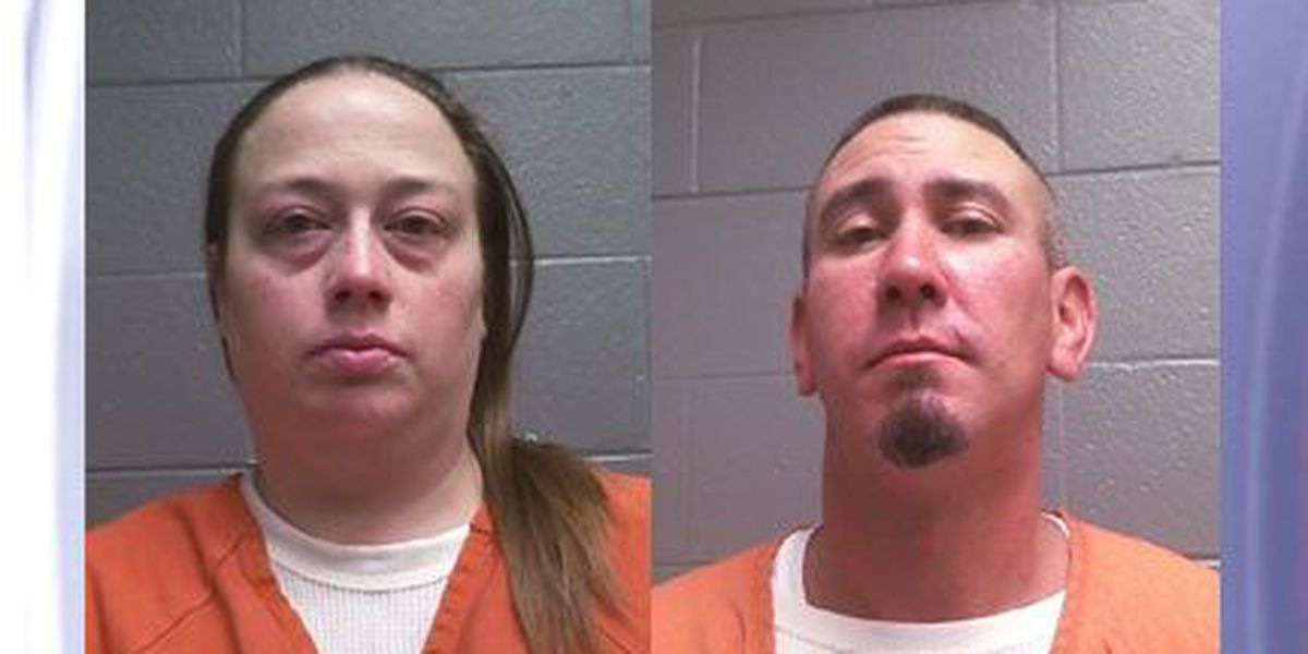 Affidavits: Jasper County couple's dogs were severely malnourished; 1 died