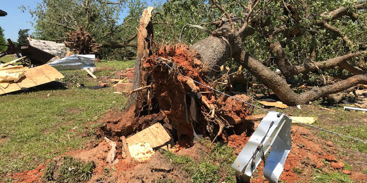 National Weather Service confirms EF-2 tornado caused damage in Sacul