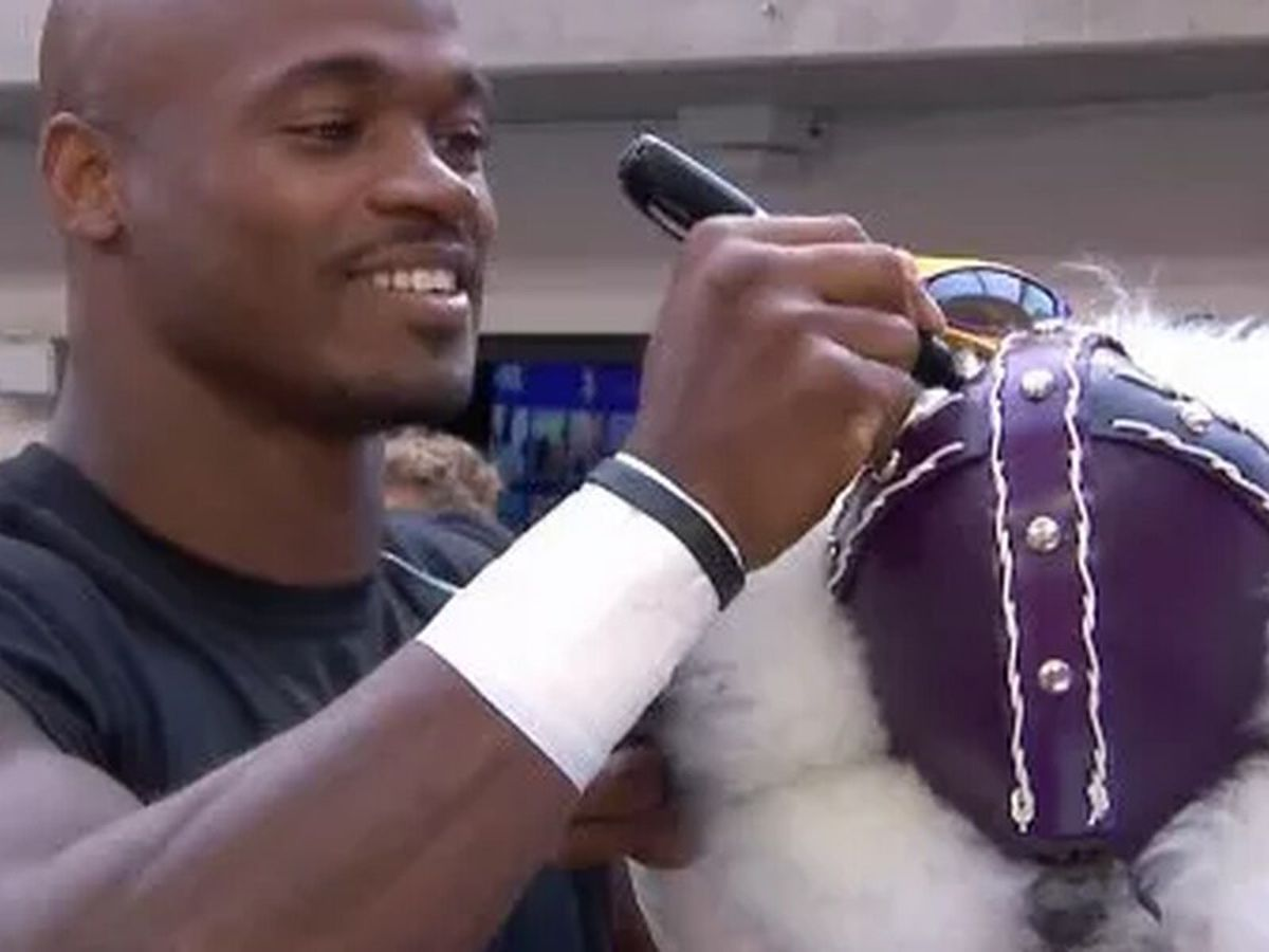 Redskins pick up option on East Texan Adrian Peterson