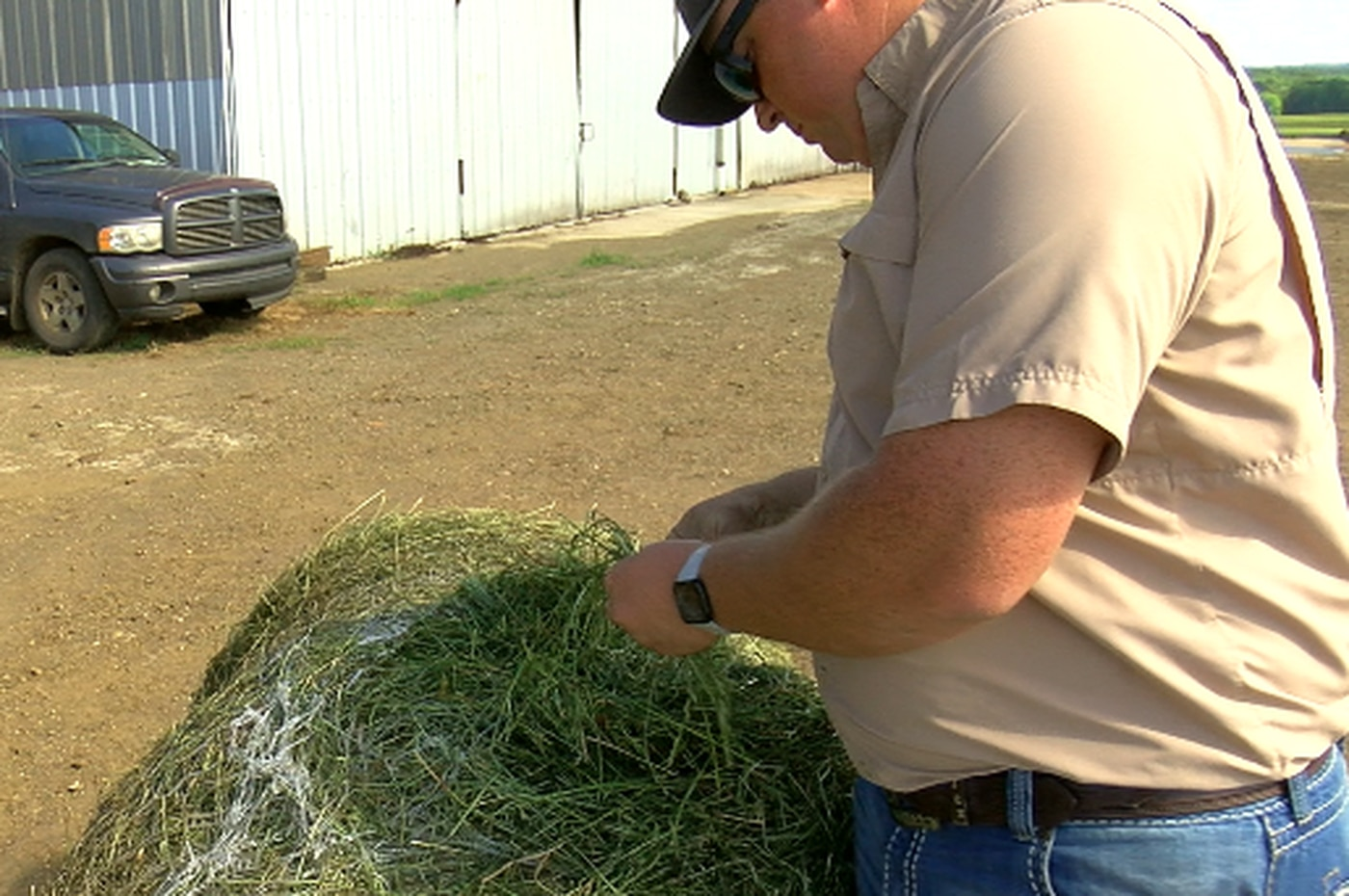 Agriculture experts talk livestock, hay issues at annual Pineywoods Cattle Congress